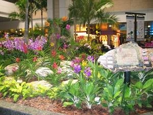 Orchid Garden, Changi Airport Site Photo
