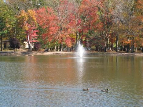 The Duck Pond, Ridgewood, NJ