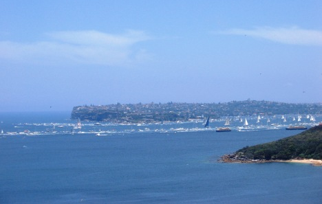 Yachts Moving Up Sydney Harbour