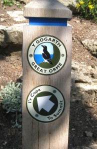 Public footpath, Y Gogarth, Great Orme