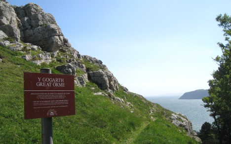 Footpath sign on way to Great Orme summit