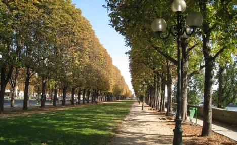 Cours de la Reine, Paris