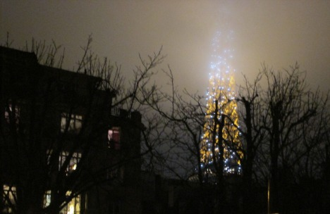 Twinkling through the trees on a winter evening, Paris