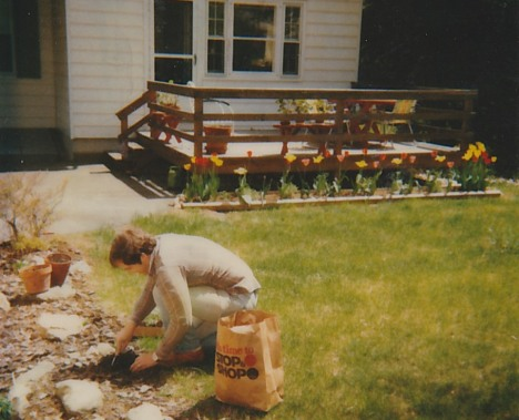 Planting in Connecticut, 1984