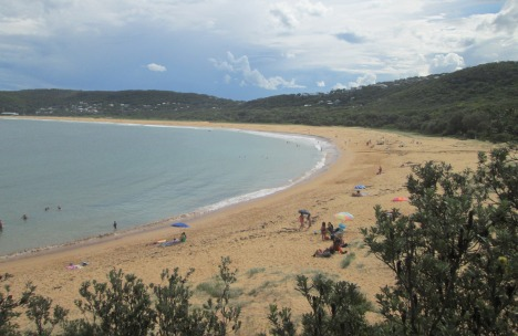 View back to Putty Beach from the coastal walk