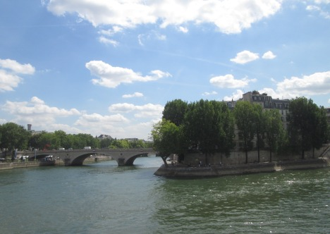 Summer day on the Seine, Paris
