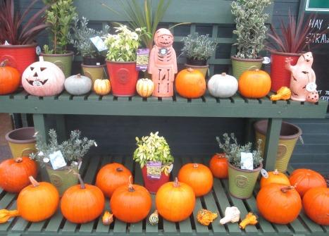 October at a farm shop near Felixstowe