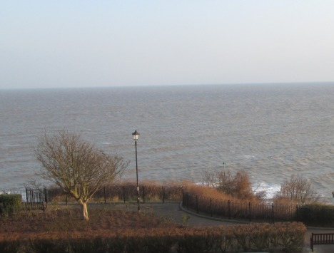 Our tree by the sea this week, Felixstowe
