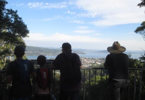 View from an Aussie bushwalk